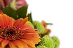 Close-up bouquet of flowers Stock Images