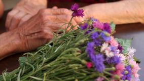 Closeup of a bouquet of flowers and wrinkled hands stock footage