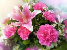 Close up bouquet pink lily and carnation colorful beauty Royalty Free Stock Images
