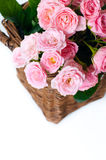 Close-up of a bouquet of pink roses Stock Images