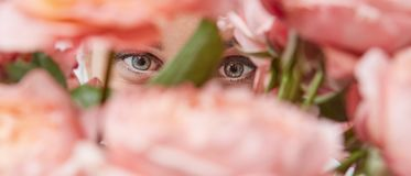 Close-up of a bouquet of pink roses. Media.The girl is looking through a bouquet of flowers. Happy Mother`s Day royalty free stock photos