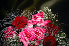 Close up bouquet with red and pink roses. On dark background Royalty Free Stock Image