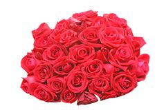 Bouquet of red roses isolated on white background. Close up Bouquet of red roses isolated on white background royalty free stock photo