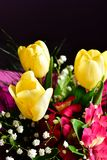 Bouquet. Close up of Bouquet of  spring flowers and yellow tulips Stock Image