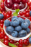 Close-up of bowl of blueberries and assorted fresh berries Stock Photos