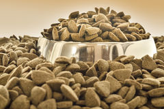 Close up of a bowl with dry dog food Royalty Free Stock Photography