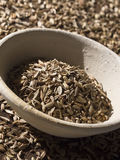 Fennel seeds Stock Photography