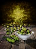 Freshly harvested fresh olives photographed on an antique wooden Royalty Free Stock Photography