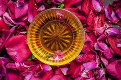 Close up of a bowl of honey,Fructose on rose,rosa petals stock photography