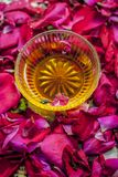 Close up of a bowl of honey,Fructose on rose,rosa petals royalty free stock images