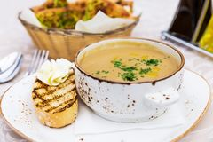 Close up of bowl with mushroom cream soup Stock Images