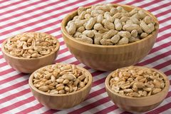 Bowls of fresh peanuts on a red checkered tablecloth Stock Images