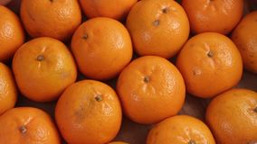 Close-up. The box under the packing sheet of paper tangerines of poor quality. Deception of consumers. The concept of a rotten cit stock footage