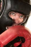 Close Up of Boxer Face Royalty Free Stock Photo