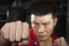Close up of boxer throwing a punch at the camera Royalty Free Stock Images