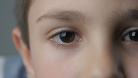 Close-up boy`s brown eyes stock footage