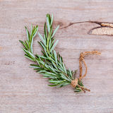Close up branch of fresh rosemary for seasoning concept on rusti Royalty Free Stock Photos