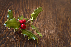 Close up of a branch of holly Royalty Free Stock Photos