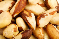 Close up of the Brazil nuts Stock Photos