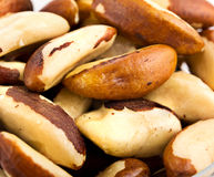A close-up of Brazil nuts Stock Images