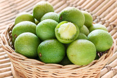 Close up Brazilian fruit Spondias tuberosa (Brazil plum, umbu, i Royalty Free Stock Photography