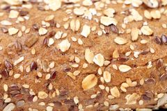 Close up of Bread made from whole grain. Royalty Free Stock Photos
