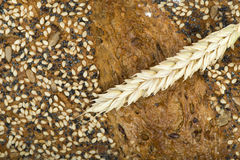 Close up Bread and wheat cereal crops Royalty Free Stock Image