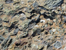 Close up of breccci or angular rock conglomerate. royalty free stock images