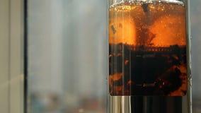 Close-up of brewing black tea in a tea pot. Morning tea ceremony. stock video footage