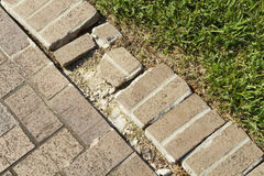 Close Up Of A Brick Walkway Edge In Need Of Repair. Close up shot of a damaged and cracked curb edge of a brick walkway in need of a serious repair job Stock Photography