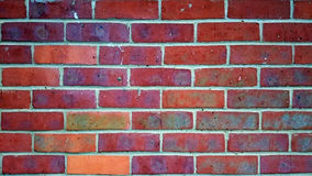 Close up of a brick wall Royalty Free Stock Images