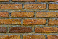 Close up of a brick-wall, texture background Royalty Free Stock Image