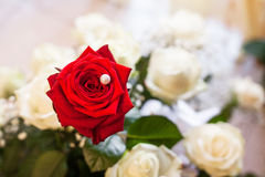 Close-up of bride bouquet of red rose Stock Photo