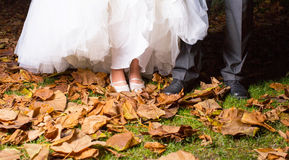 Close-up Of Bride And Groom's Leg stock image