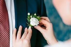 Wedding . Close up bride`s hands pinning boutonniere to groom` jacket. Close up bride`s hands pinning boutonniere to groom` jacket. Wedding preparation Stock Photo