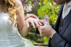 Close-up of bridegroom wearing wedding ring on bride's finger Royalty Free Stock Photo