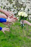 Close-up  of bridesmaids stretching their hands to take wedding bouquet Stock Photos
