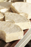 CLose up of brie cheese Royalty Free Stock Photos