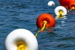 Close-up bright red and white coloers buoys on the surface of the water. Depth marks. Safety on water.  royalty free stock photo