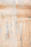 Close-up bright wood texture. High resolution picture of blank s Stock Images