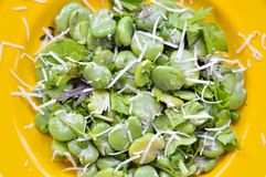 Close-up of broad bean salad with hard cheese. Stock Images