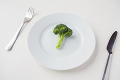 Close up of broccoli on plate Royalty Free Stock Image