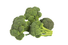 Close-up of broccoli sprout. Isolated over white Royalty Free Stock Image