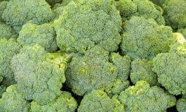 Close up brocolli Stock Images