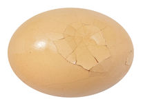 Close up of broken egg Royalty Free Stock Images