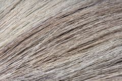 Close up Broom Stock Photography