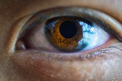 A close up of a brown eye. With the reflexion of a window stock photography