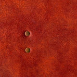 Close-up brown leather texture with rivet Stock Photos