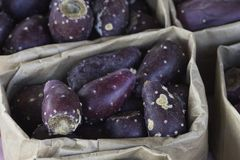 Close up of brown paper bags filled with prickly pear fruit Royalty Free Stock Photography