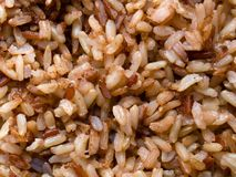 Close-up of the brown rice. Cooked. Healthy lifestyle eating royalty free stock images